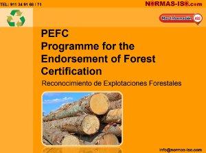 PEFC Certificación de Explotaciones Forestales PDF