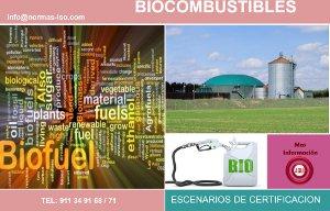 Certificación en Biocombustibles PDF