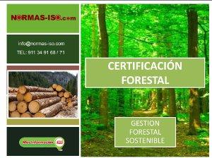 Certificación Forestal PDF