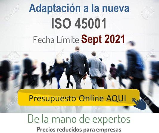 Presupuesto Online Adaptación ISO 45001